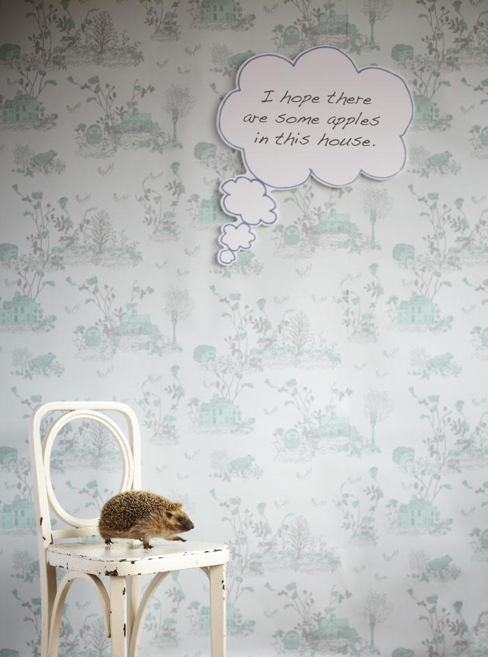 Hedgehog Thought Bubble, Magnetic Woodlands Wallpaper by Sian Zeng