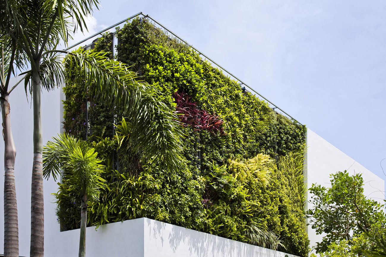 Green Living Wall